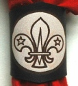 DARK BRANDED SCOUT WOGGLE