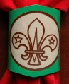 GREEN BRANDED SCOUT WOGGLE